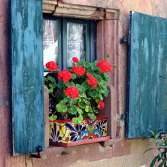 Blumenkasten farbig und bunt aus Mexiko