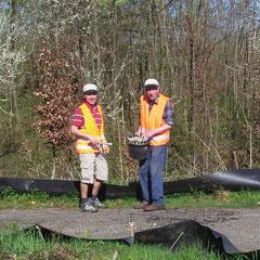 Luis Ramos und Karl Klingenstein beim Abbau des Krotten-Zauns (Foto: Edwin Strobel)