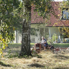 Mahd im Spätsommer am Brunnenwässerle (Foto: NABU Langenargen)