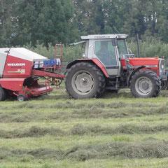 Im Spätsommer ist der Boden ausgetrocknet, so dass die Gefahr von Bodenverdichtung durch schwere Maschinen gering ist. (Foto: NABU Langenargen)