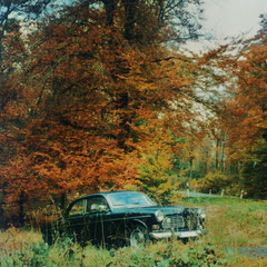 Herbststimmung Volvo Amazon