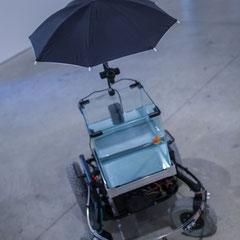 3 Machine 2 Fish, exosquelette pour poisson rouge. 2016. Quentin Destieu, Sylvain Huguet. Octobre numérique, Espace van Gogh, Arles