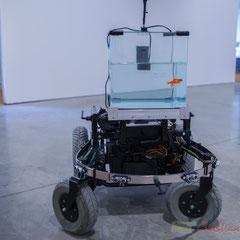 2 Machine 2 Fish, exosquelette pour poisson rouge. 2016. Quentin Destieu, Sylvain Huguet. Octobre numérique, Espace van Gogh, Arles