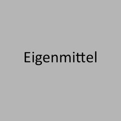 <h3> Eigenmittel unter Basel III