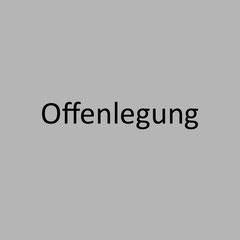 <h3> Offenlegung unter Basel IV