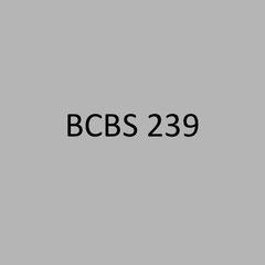 <h3> BCBS 239