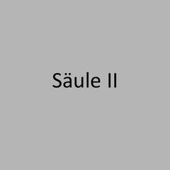 <h3> Säule II unter Basel III