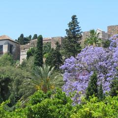 Malaga - Farbenprächtige Stadtansichten mit Alcazabar