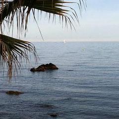 immer wieder neue Fotomotive am Senda litoral