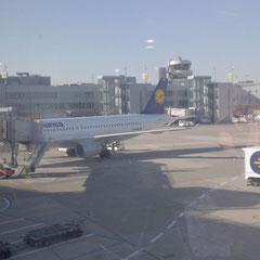 Ankunft im Lufthansa-Terminal in Düsseldorf.