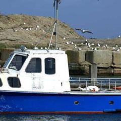 Hafen von Hvide Sande