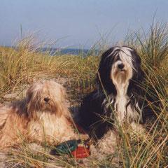 Gesar und Indra als junges Paar in Dänemark im Urlaub
