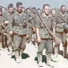 """44. Infanteriedivision """"Hoch- und Deutschmeister"""" 1942"""