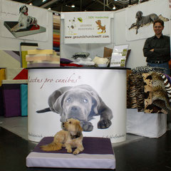Mala probiert ein medizinisches Hundebett Lectus pro canibus® Modern Line in lila