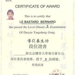 diplôme dao yin yang sheng gong