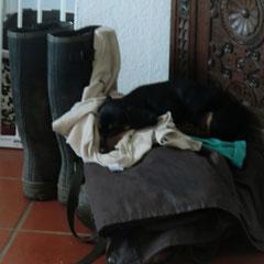Zweit Schlafplatz