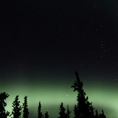 2015:  Northern lights in Yukon (CAN)