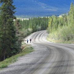 2015:  Road in Denali National Park, Alaska (USA)