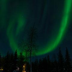 2018:  Northern lights in Lappland, Luosto (Finnland)