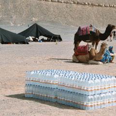 Wasser für Kamele