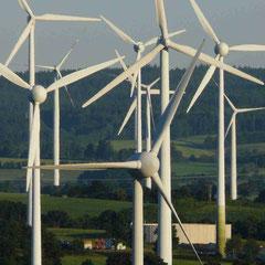 ...da müssen sie durch! Konzentrierte Windparks in der Agrarlandschaft mit tierökologischen Begleitstudien sind zunächst eine Mölichkeit. Foto: Clemens Hackenberg