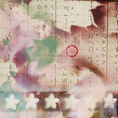 © Nathalie Arun, bilderserie japan, sakura 2