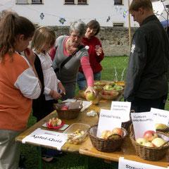 Das Apfelquiz stellte das naturkundliche Wissen der Besucher auf die Probe