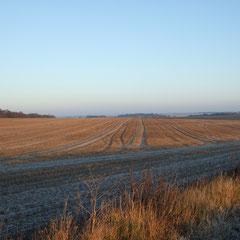 An Early Start Towards Stonehenge  (Walk 6 )