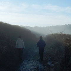A trail of mist and imagination (Walk 9)