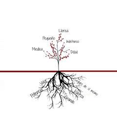 Los problemas de las raíces