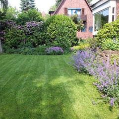 Gut eingewachsener Garten