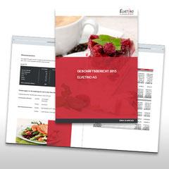 Kunde: Elvetino / Auftrag: Geschäftsbericht 2015