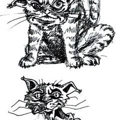 Kattenschets