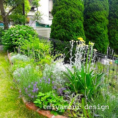 花壇や門廻りの植栽「花や実もの、香りを楽しむ花壇」©miyamori design