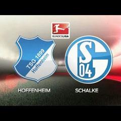 TSG 1899 Hoffenheim vs. Schalke 04