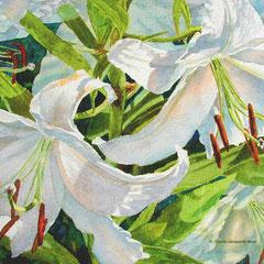 """"""" Tapestry in White """""""