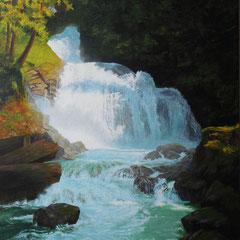 """"""" Crazy Creek Falls"""""""