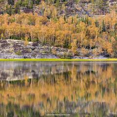 Madeleine Lake, Yellownife.