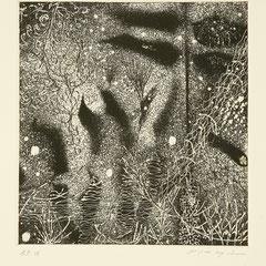 「いつか見た雪」銅版画、紙。2006年。 イメージサイズ20cm×19cm。額縁あり。  小品なのでインテリアとしても最適です。