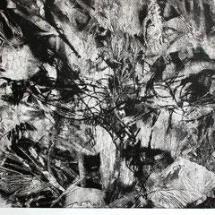 「黒のエチュード」銅版画、紙。2011年。36cm×59cm。額縁あり。