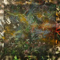 希望の花・詩曲 2006年 銅版画、ドローイング S50 個人蔵