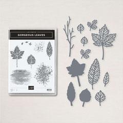 "Produktpaket ""Gorgeous Leaves"""