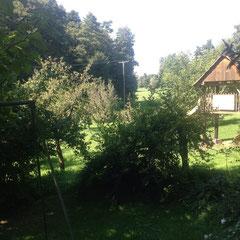 Der Garten mit Blick ins Naturschutzgebiet
