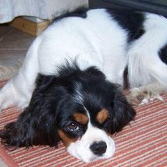 Babette 9 Monate