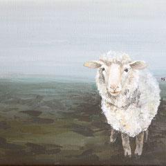 Schafe zählen 3, 30 x 20 cm