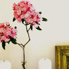 Immer frische Blumen und Kerzen!
