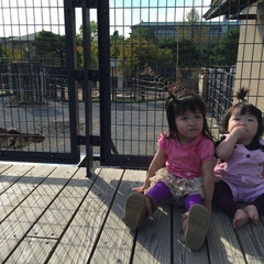 お父さん超ハードワークだった頃。休日の動物園。