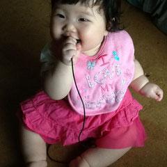 伊藤家次女りん。産まれた時からまんまる。