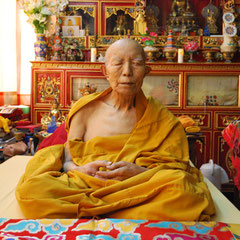 Tenga Rimpoche im Kudung