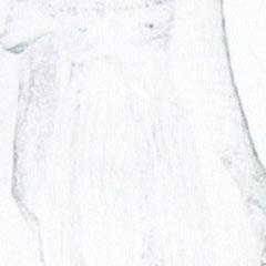 Référence : Histoire de la mode et du costume